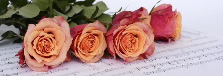 roses-2366341_1280